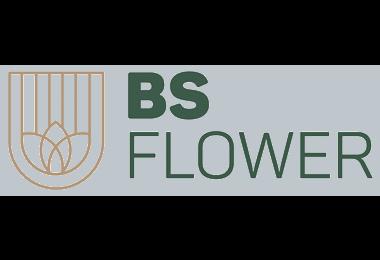 BS Flower